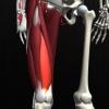 膝の違和感を改善「浦和パーソナルトレーニング」